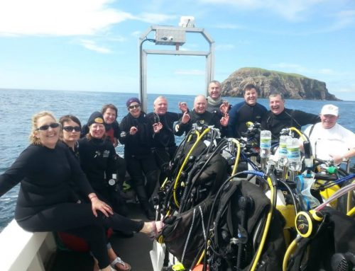 Dive Arranmore